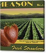 Meason Strawberries Canvas Print