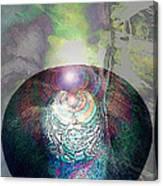 Medicine Bowl Canvas Print