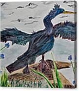 Anhinga-drying Out Canvas Print