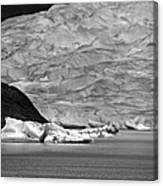 Mendenhall Glacier Bw Canvas Print