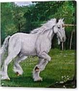 Merlin's Unicorn Canvas Print