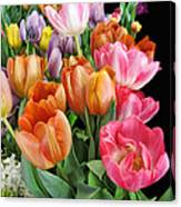 Merry Dresden Style Tulips Canvas Print