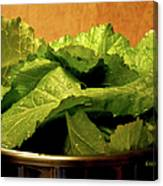 Mess Of Greens Canvas Print
