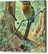 Mexican Motmots Are Perched On Jungle Canvas Print