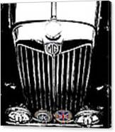 Mg Grill With Dash Of Color Canvas Print