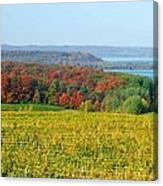 Michigan Winery Views Canvas Print