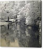 Middle River In Infrared Canvas Print