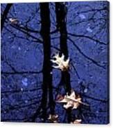 Midnight Stillness Canvas Print