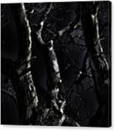 Midnight Tree 3 Canvas Print