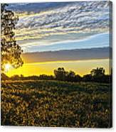 Midwest Sunset Canvas Print