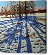 Midwinter Canvas Print