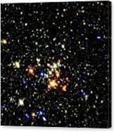 Milky Way Star Cluster Canvas Print