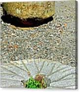 Mill Stones Canvas Print