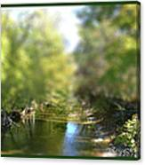 Mini Stream Canvas Print