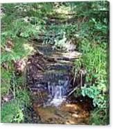 Mini Waterfall At Lower Tahquamenon Falls Park Canvas Print