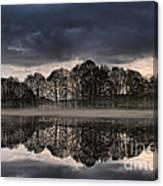 Mirrored Trees Canvas Print