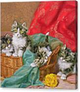 Mischievous Kittens Canvas Print