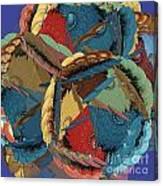 Mishmosh Canvas Print