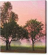 Mist Morning Sunrise Canvas Print