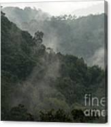 Misty Cloud Forest Matagalpa Nicaragua Canvas Print
