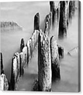 Misty Wooden Posts Canvas Print