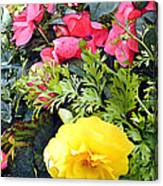 Mixed Ranunculus In A Hanging Basket Canvas Print