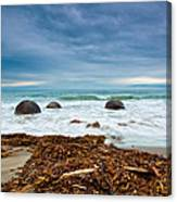 Moeraki Boulder East Coast Of South New Zealand Canvas Print