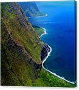 Molokai Coast Canvas Print