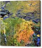 Monetesque Canvas Print
