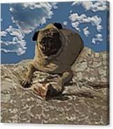 Mongo With Texture Canvas Print