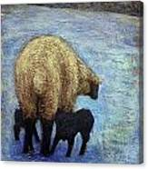 Monkton Ewe With Her Lambs In The Snowy Field Canvas Print