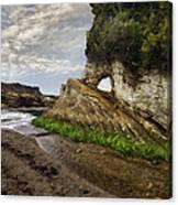Montana De Oro Bluffs Canvas Print
