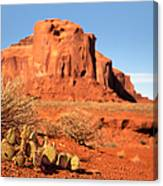 Monument Valley Cactus Canvas Print