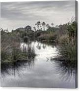 Moody Marsh Canvas Print