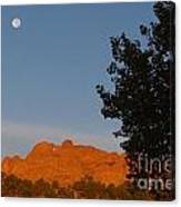 Moon Above Kissing Camels Canvas Print