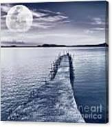 Moon Canvas Print