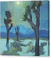 Moon Shadows At Joshua Canvas Print