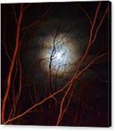 Moonlight By The Camp Fire Canvas Print