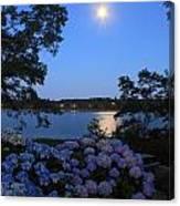 Moonlit Hydrangeas By The Se Canvas Print