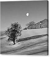Moonset At Dawn Canvas Print