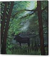 Moose In Pines Canvas Print