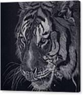 Moquito El Tigre Canvas Print