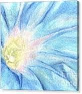 Morning Glorious Canvas Print