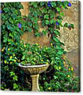 Morning Glory Garden In Provence Canvas Print