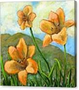Morning Glow Canvas Print