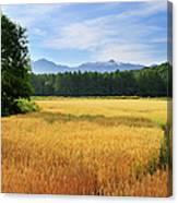 Morning In Hokkaido Canvas Print