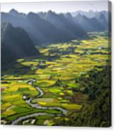 Morning In Valley Canvas Print