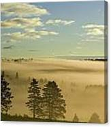 Morning Mist Over Trees, New Glasgow Canvas Print