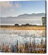 Morning Mists Of Cutler Marsh - Utah Canvas Print