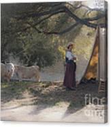 Morning Pleasantries Canvas Print